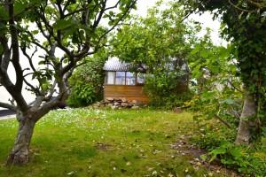 side-garden-the-gables-near-fowey