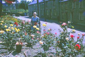 Granny-rose-garden-1960s